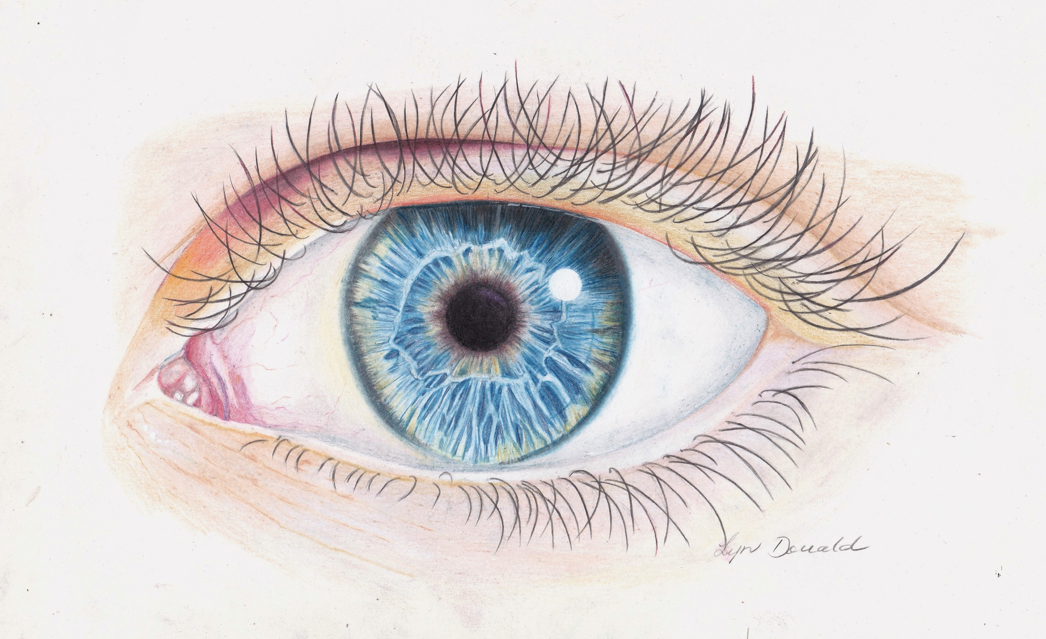 I've Got my Eye on You-Coloured Pencil-copy