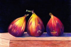 Safety in Numbers - Figs-Coloured Pencil
